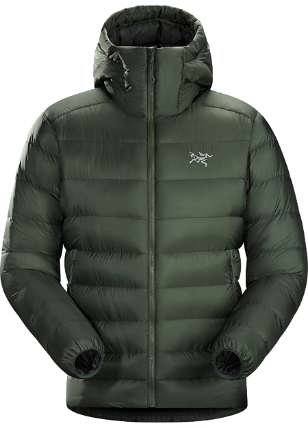 Cerium SV Hoody Men's Cypress