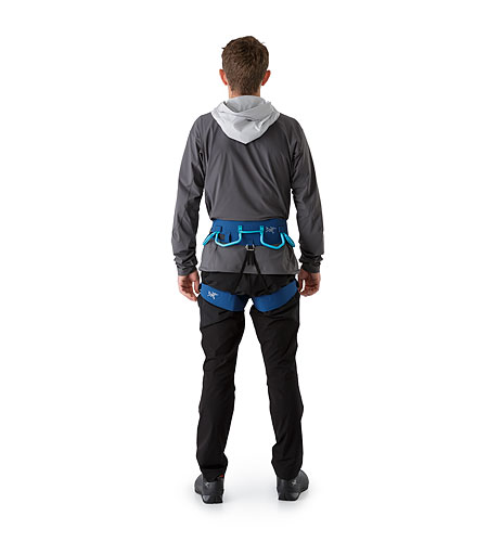 AR-395a Harness Poseidon Back View
